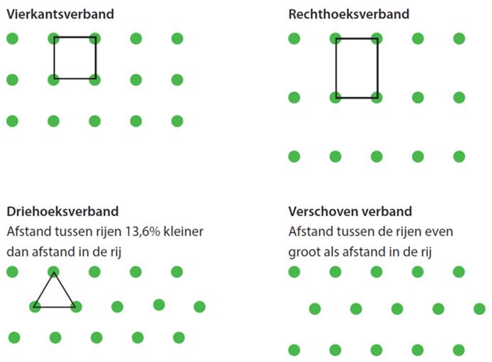 De verschillende typen plantverbanden.