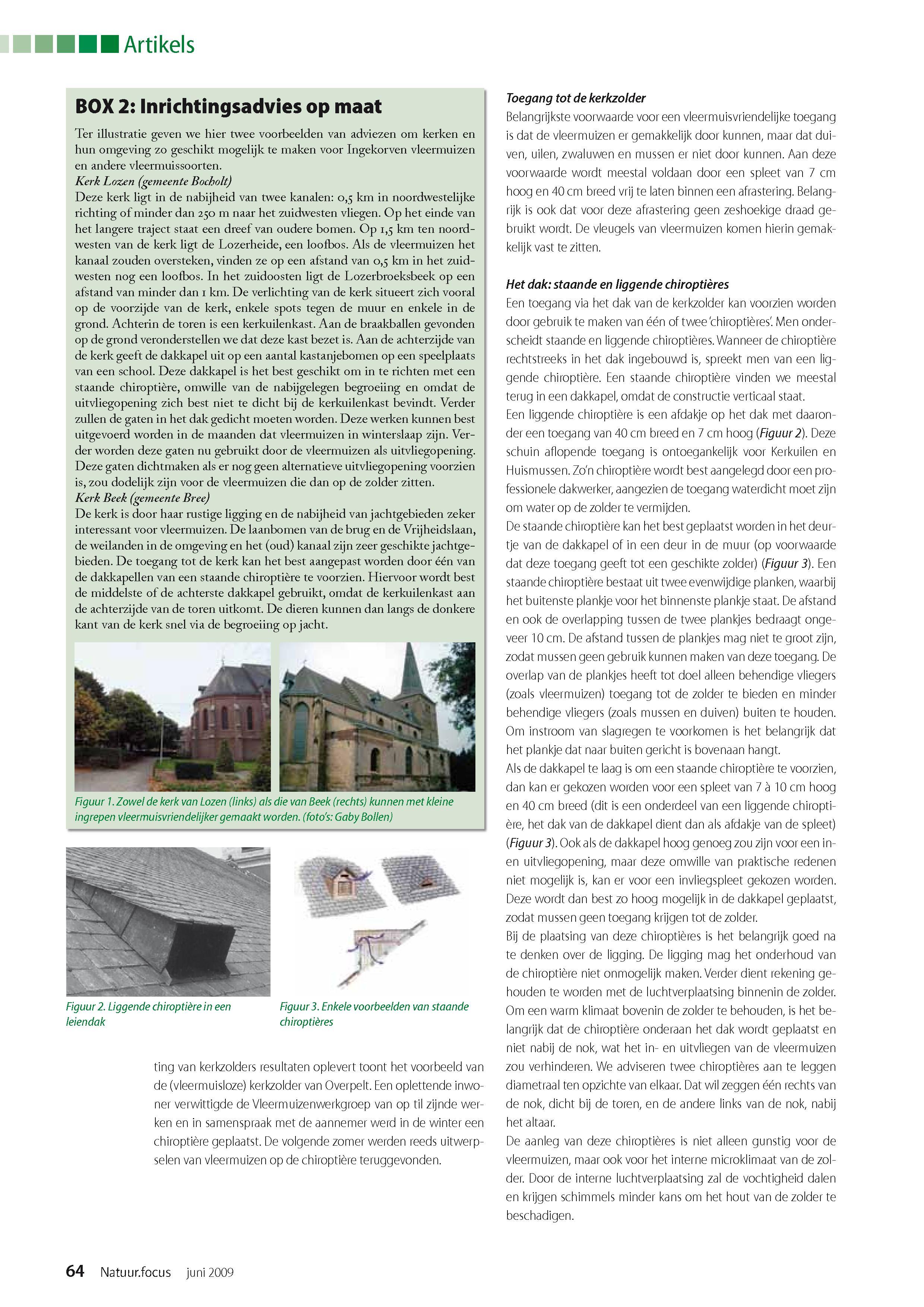 inrichten van kerkzolders voor de ingekorven vleermuis