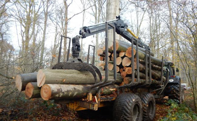 Uitrijwagen met korthout beuk